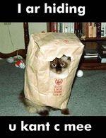 I-ar-hiding