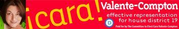 Cara V-C banner-DFNM
